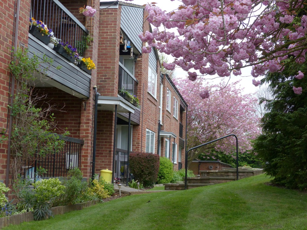 Balconies in Spring